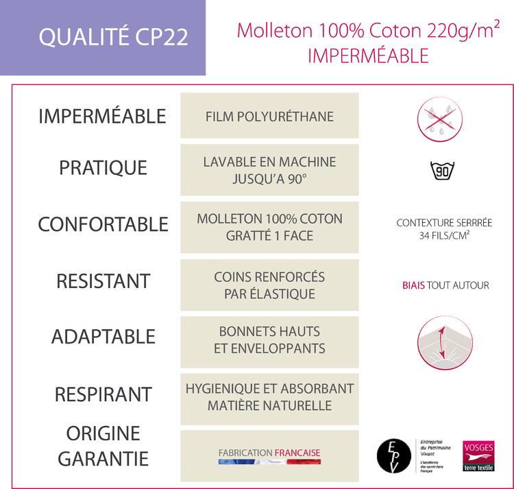 FICHE TECHNIQUE CP22 - Protection Blanc des Vosges